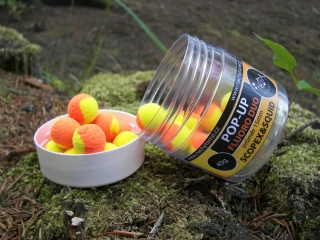 Pop-Up FluoroDuo Scopex&Squid 40g